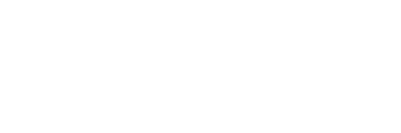 Purple Willow Consulting Logo